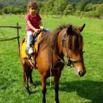 アイランドホースリゾート那須で乗馬体験